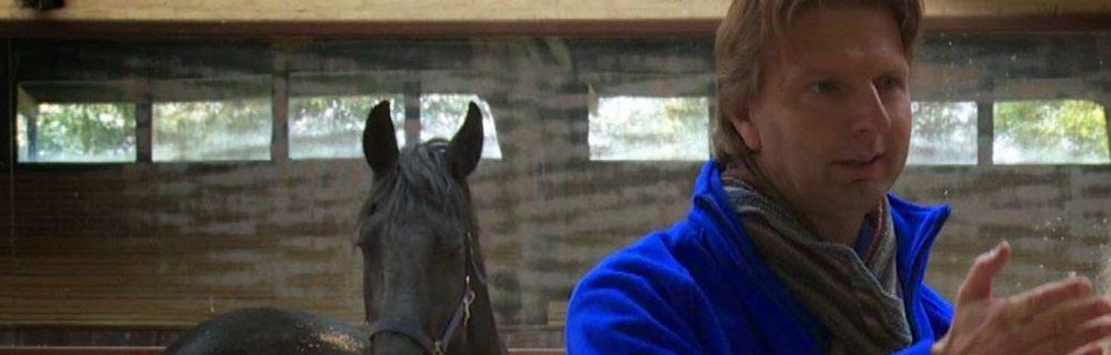 Opleiding NLP Paardencoaching