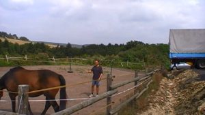 paardencoaching, coach, Ferdinand Aukes