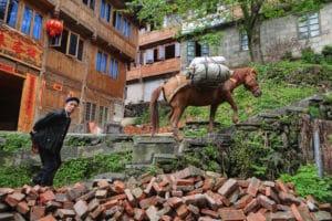 Chinese boer en herkaderen